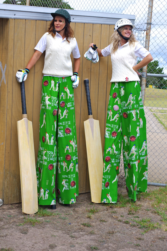 2-Cricket-